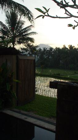 The Chedi Club Tanah Gajah a GHM Hotel: View of the mountain from Pool Villa #9