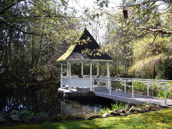 Bear's Lair Bed & Breakfast: A gazebo out on their pond - with night lights!
