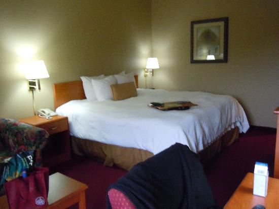 Hampton Inn Altoona: more pictures of the room
