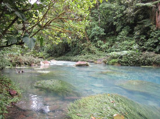 Celeste Mountain Lodge: Le rio Céleste