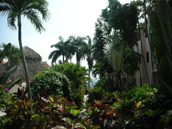 Hotel Cita del Sol: Walkway next to the pool