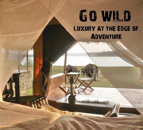 Nagarhole National park, India: View from the luxury tent.