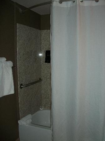 Wingate by Wyndham St. George: Shower/bath with shampoo/soap dispensers