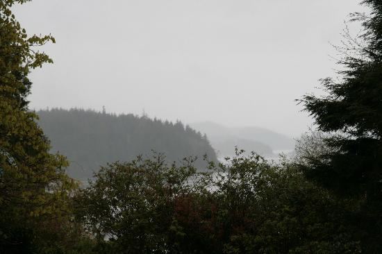 Bedwell Place Guest House: The view in rainy weather!