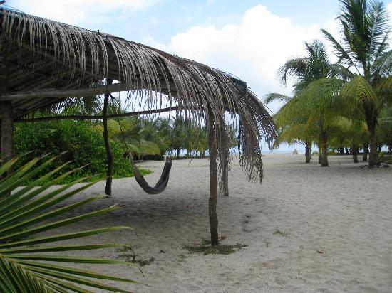 Buritaca, Colombia: lovely hammocks on the beach