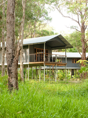 Treehouse Retreat at Diamond Waters