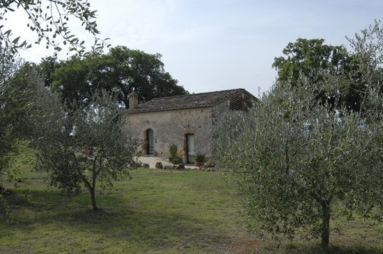 Photo of Agriturismo Podere del Fara Siena
