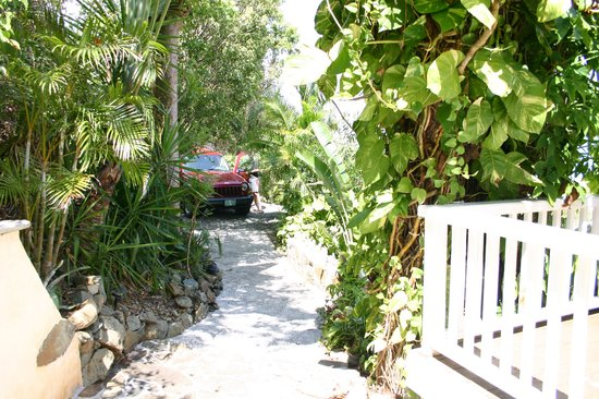 Perelandra Villa: Driveway and path to the front - very lush foliage provides LOTS of privacy