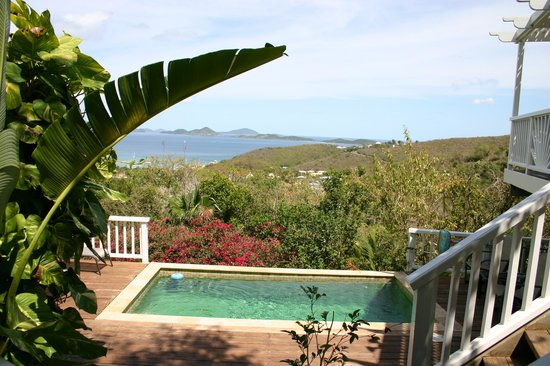 Perelandra Villa: Can't beat the private pool and this view!