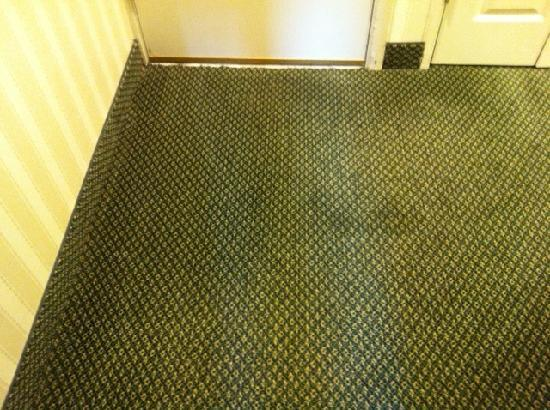 Red Lion Hotel Bellevue: Filthy carpet by door