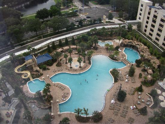One of the pools picture of hyatt regency orlando for Pool show in orlando 2016