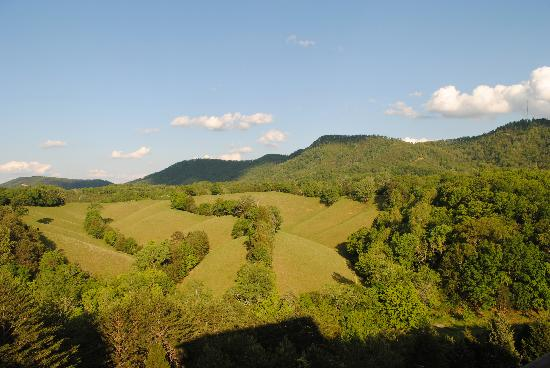 Berry Springs Lodge: View from private balcony