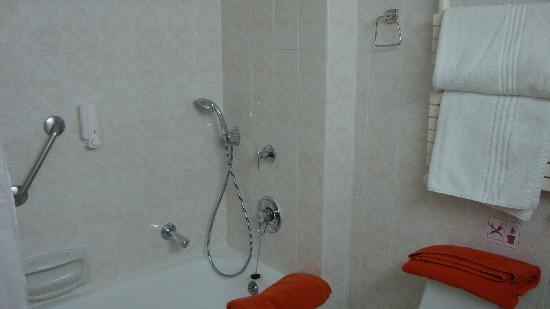 Forest Park Hotel: The bathroom
