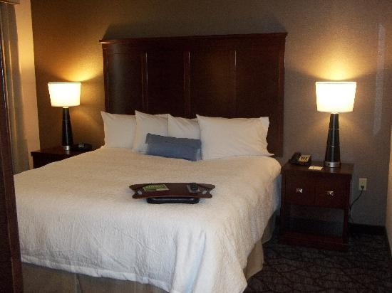 Hampton Inn & Suites Houston/Pasadena: King Studio Suite