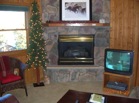 Black Canyon Inn: FIreplace in the condo (we like the tree and always have it on)