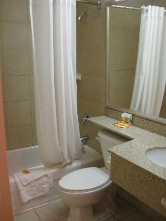 Econo Lodge Inn & Suites Downtown: Washroom