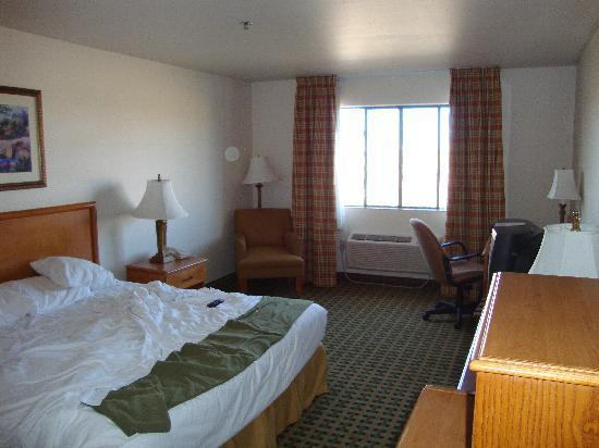 Holiday Inn Express Hotel & Suites Kingman: our room