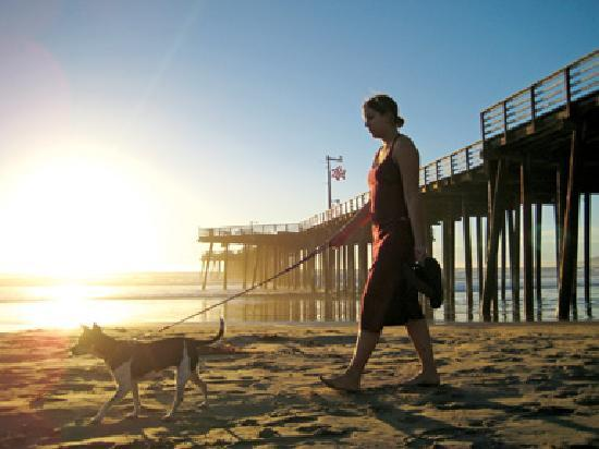 Pismo Beach, CA: Gateway to miles of sandy beaches