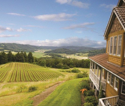 Photo of Youngberg Hill Vineyards & Inn McMinnville