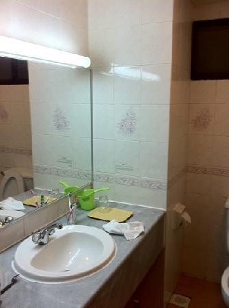 The apartment picture of natasya resort cameron for Attached bathroom design