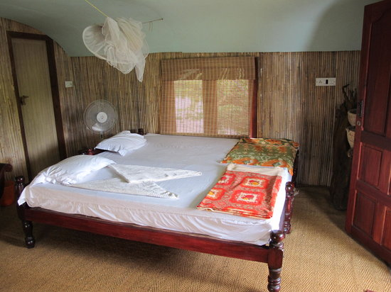 Photo of Johnson's The Nest Homestay Kochi
