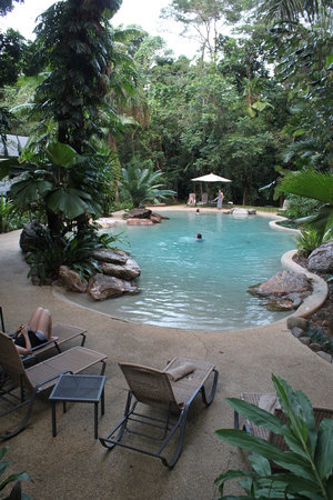Ferntree Rainforest Resort