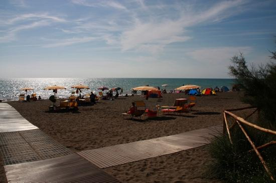 Marina di Bibbona, Italia: spiaggia