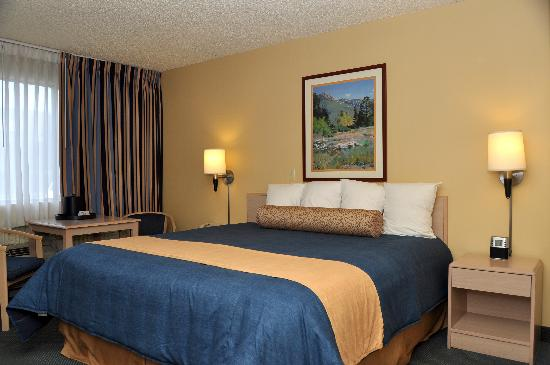 BEST WESTERN PLUS University Inn: Enjoy spacious king size beds during your stay.