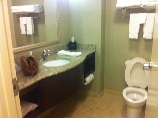 Holiday Inn Express Hotel & Suites Covington: bathroom