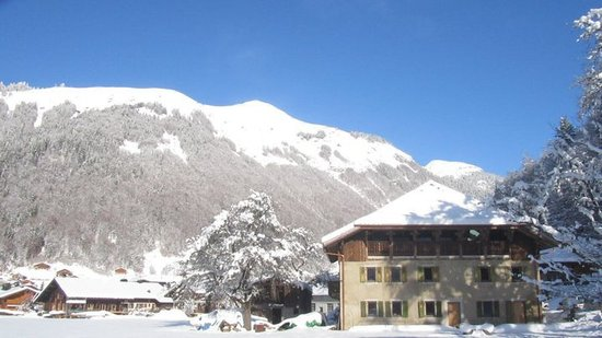 Montriond, Francia: getlstd_property_photo