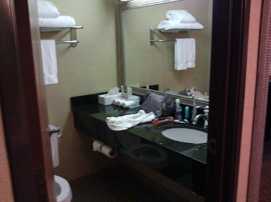 Holiday Inn Express Gaylord: Bathroom