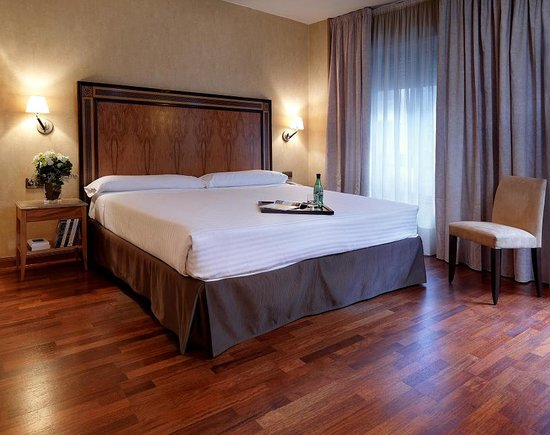 Hotel El Coloso : Double Room