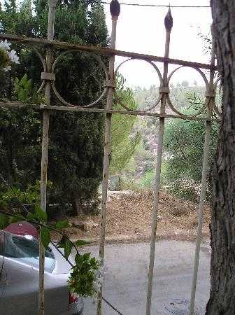 Rose of Castel Residence: view - olive trees