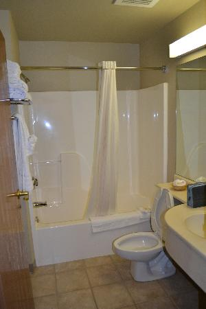 Microtel Inn & Suites by Wyndham Rapid City: Bathroom
