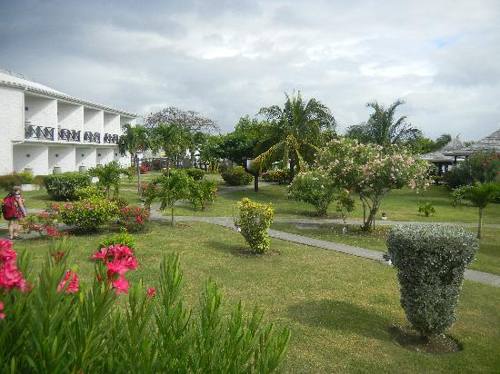 Coyaba Beach Resort : Grounds
