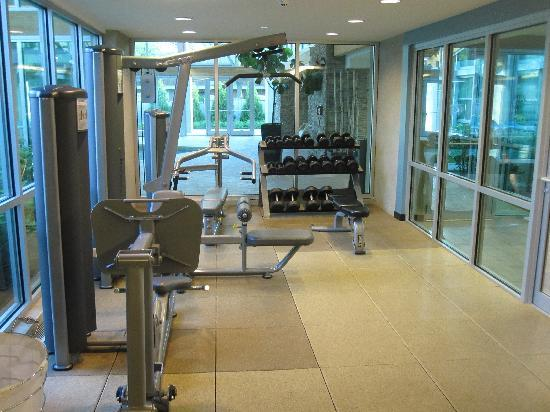 Crowne Plaza Glen Ellyn Lombard: Fitness center 1