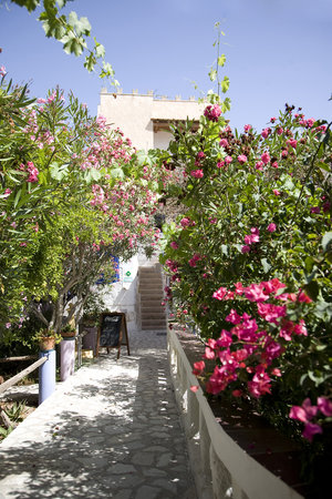 Photo of L'Oasi Villaggio Albergo Favignana