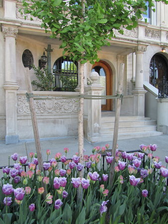 Wyman House: Kerbside garden, Riverside Drive