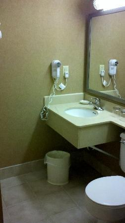 Holiday Inn St Paul Downtown: Basic bathroom and amenities