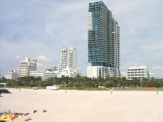 Continental Oceanfront Hotel South Beach: hotel visto dalla spiaggia