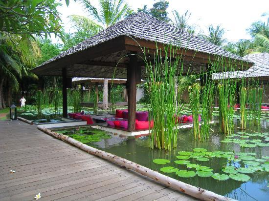 Evason Hua Hin: Restaurant In Lotus Pond