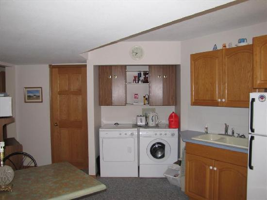 Cascade Court Bed & Breakfast: Guest area with Washing machine, tea/coffee facilities and fridge