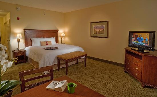 Hampton Inn & Suites North Charleston-University Blvd: King Bed, standard room
