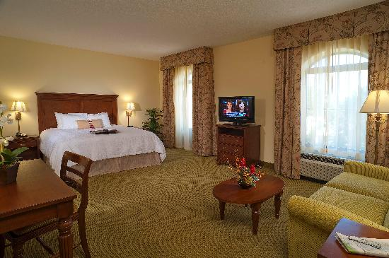 Hampton Inn & Suites North Charleston-University Blvd: King Bed, Studio Suite