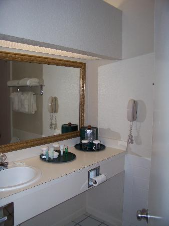 BEST WESTERN PLUS Westchase Mini-Suites: Bathroom