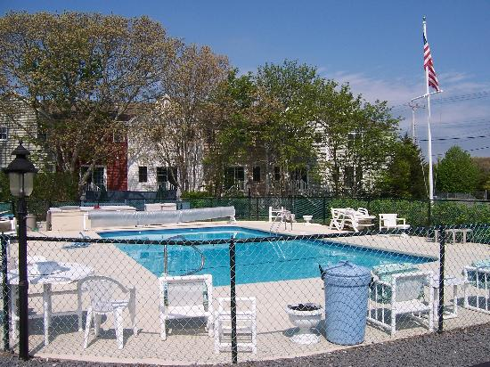 A Beach Breeze Inn : The Pristine Pool
