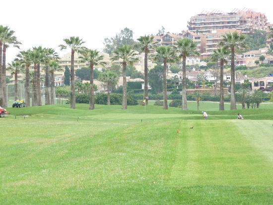 Melia La Quinta Golf &amp; Spa Resort: La Quinta Golf Course