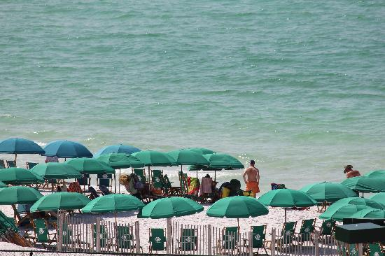 The Islander: Islander's beach umbrellas/chairs