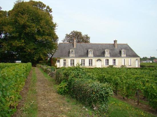 Chateau Gaudrelle Vouvray