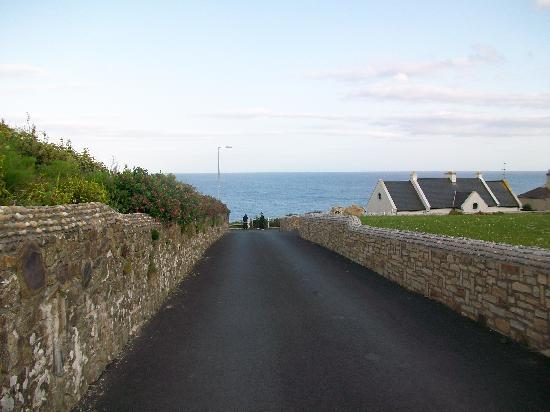 Cloneen Bed & Breakfast: Street view to cliff walk